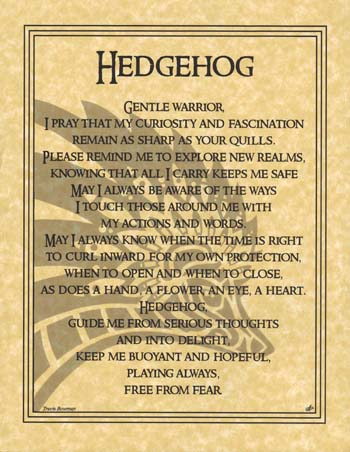 Hedgehog Prayer